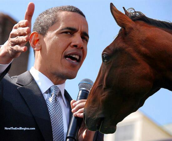 horseobamapromise